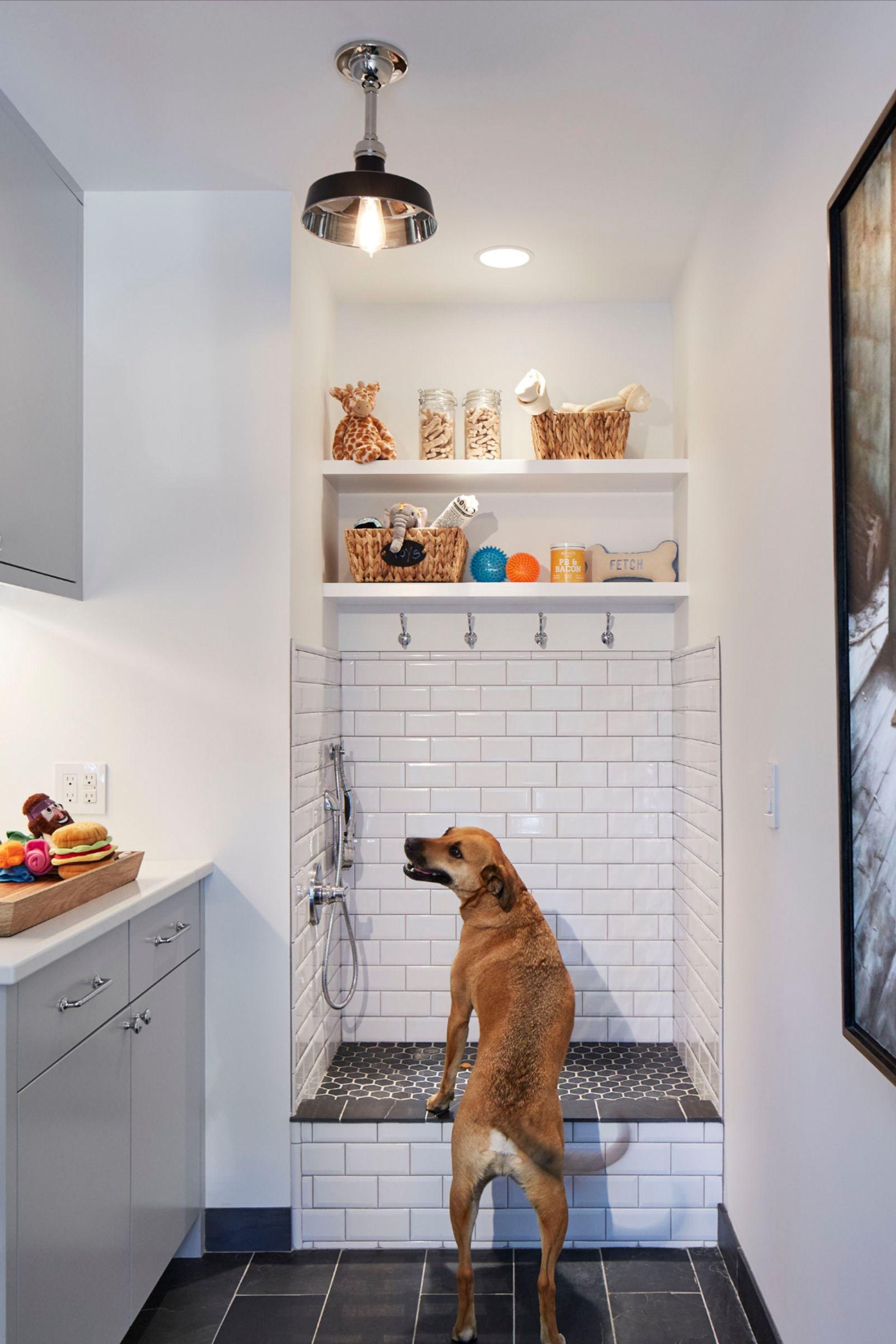 Dog shower scandinavian remodel edina mn dog washing