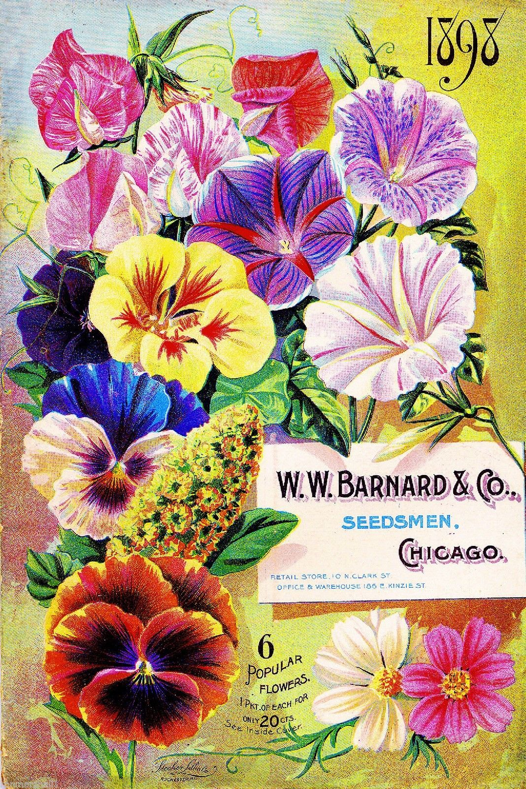 1898 Barnard Popular Vintage Flowers Seed Packet Catalogue