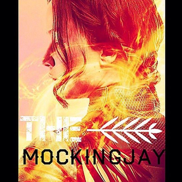 #Katniss #Mockingjay  #OurLeaderTheMockingjay