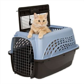 Cat Carrier Types Hard Cat Carriers Cat Travel Carrier Pet Kennels Cat Carrier