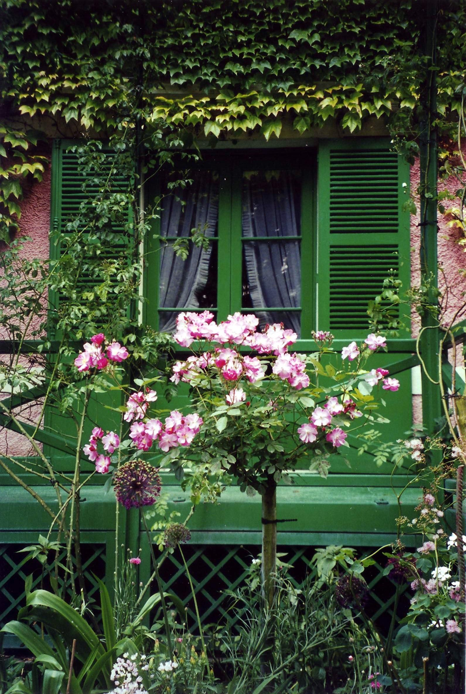 House garden trees  Roses and window of Monetus house  Beautiful balconies and Windows