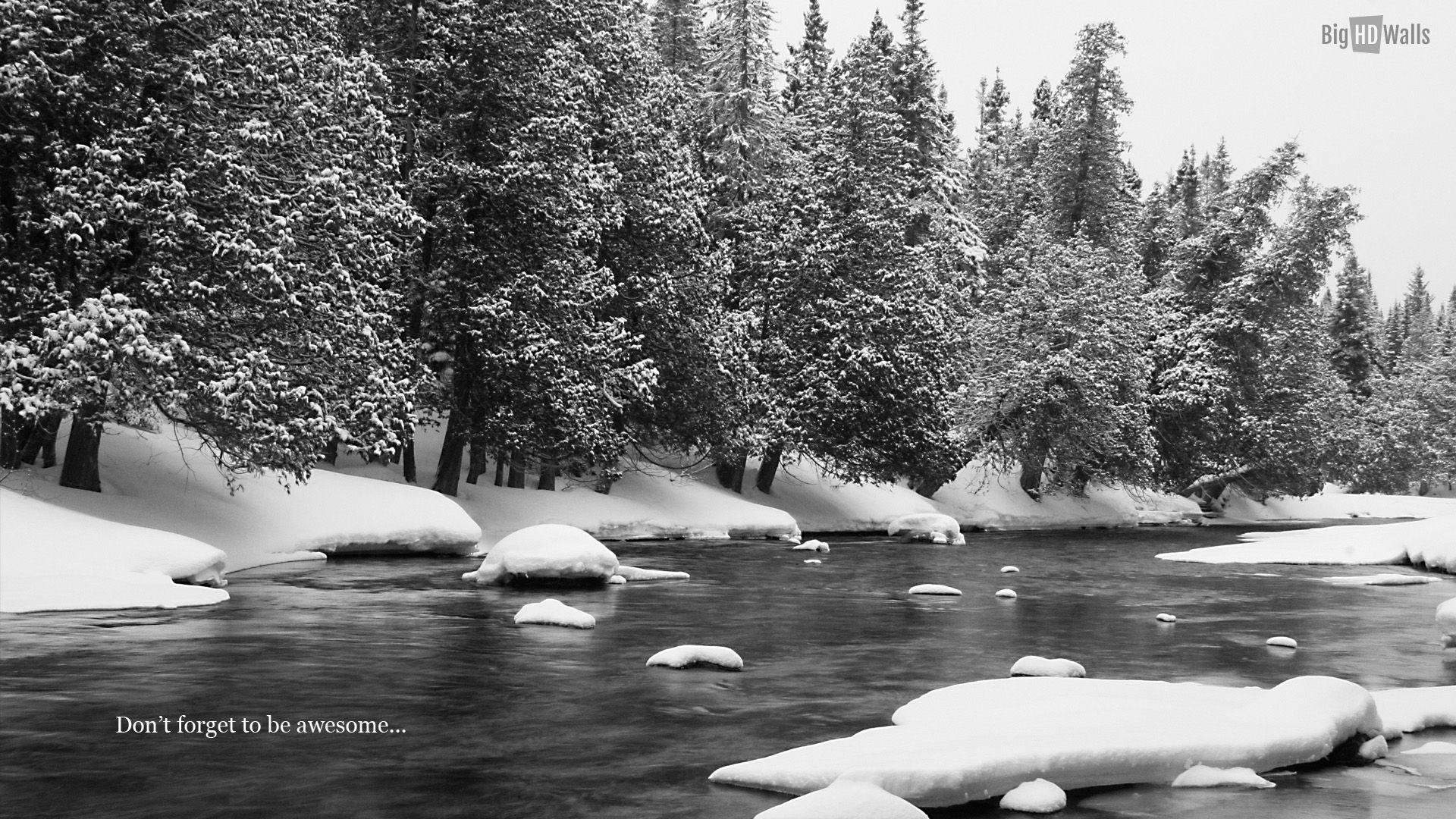 Black And White Winter Landscape HD desktop wallpaper Mobile