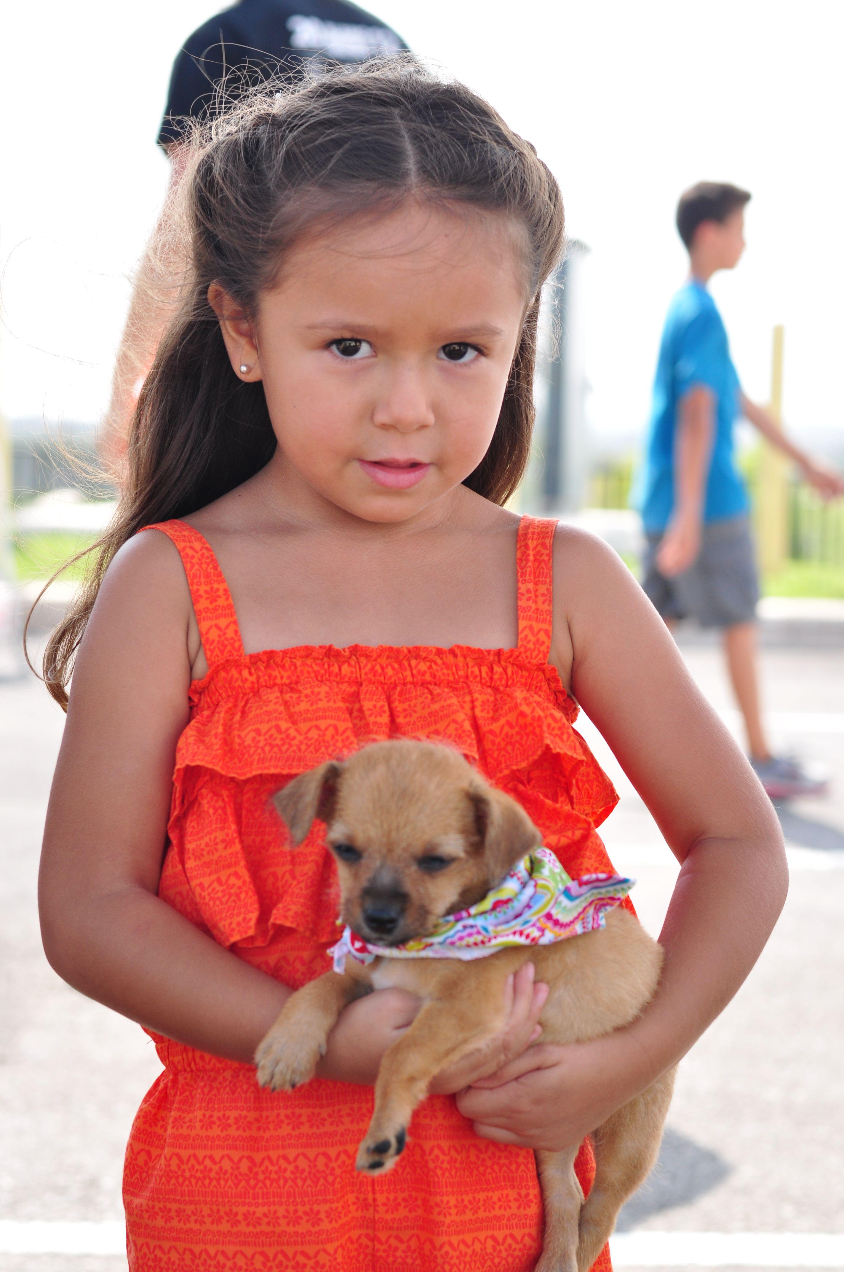 Home Howliday Pet Adoption Event Pet Adoption Party Pet Adoption