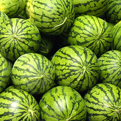 Your Tropical Fruit Flavor is Watermelon  You are both independent and interdependent. You need value your space and your loved ones. You act from the heart, and it shows. You are refreshingly generous.  You are a truly courageous person. You have the guts to do what's right, even when it isn't easy. You believe in yourself and the people around you. You know that others can always surprise you.
