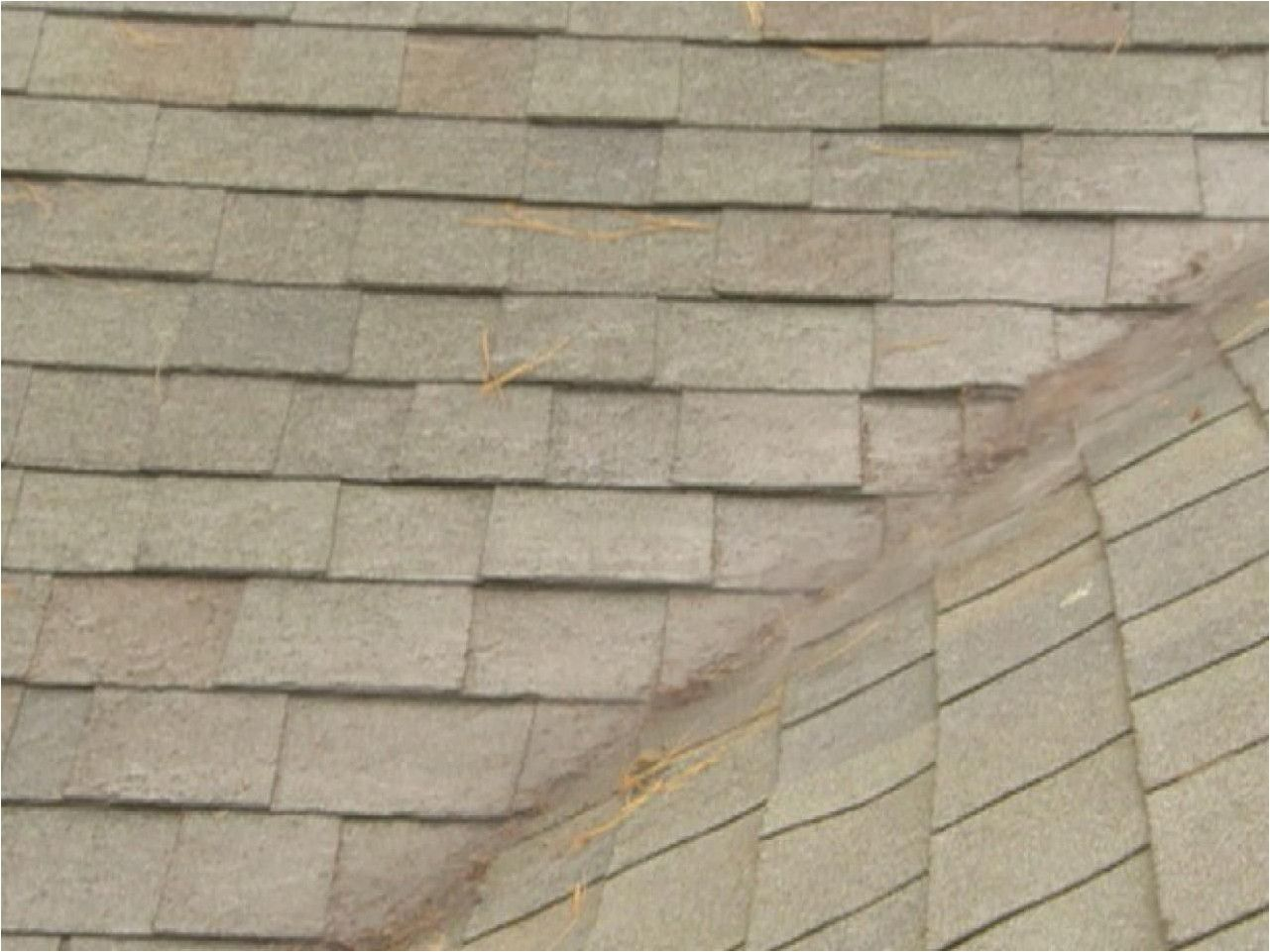 Guide On How To Repair Your Roof Roofing Design Guide Roof Repair Diy Leaking Roof Roof Repair