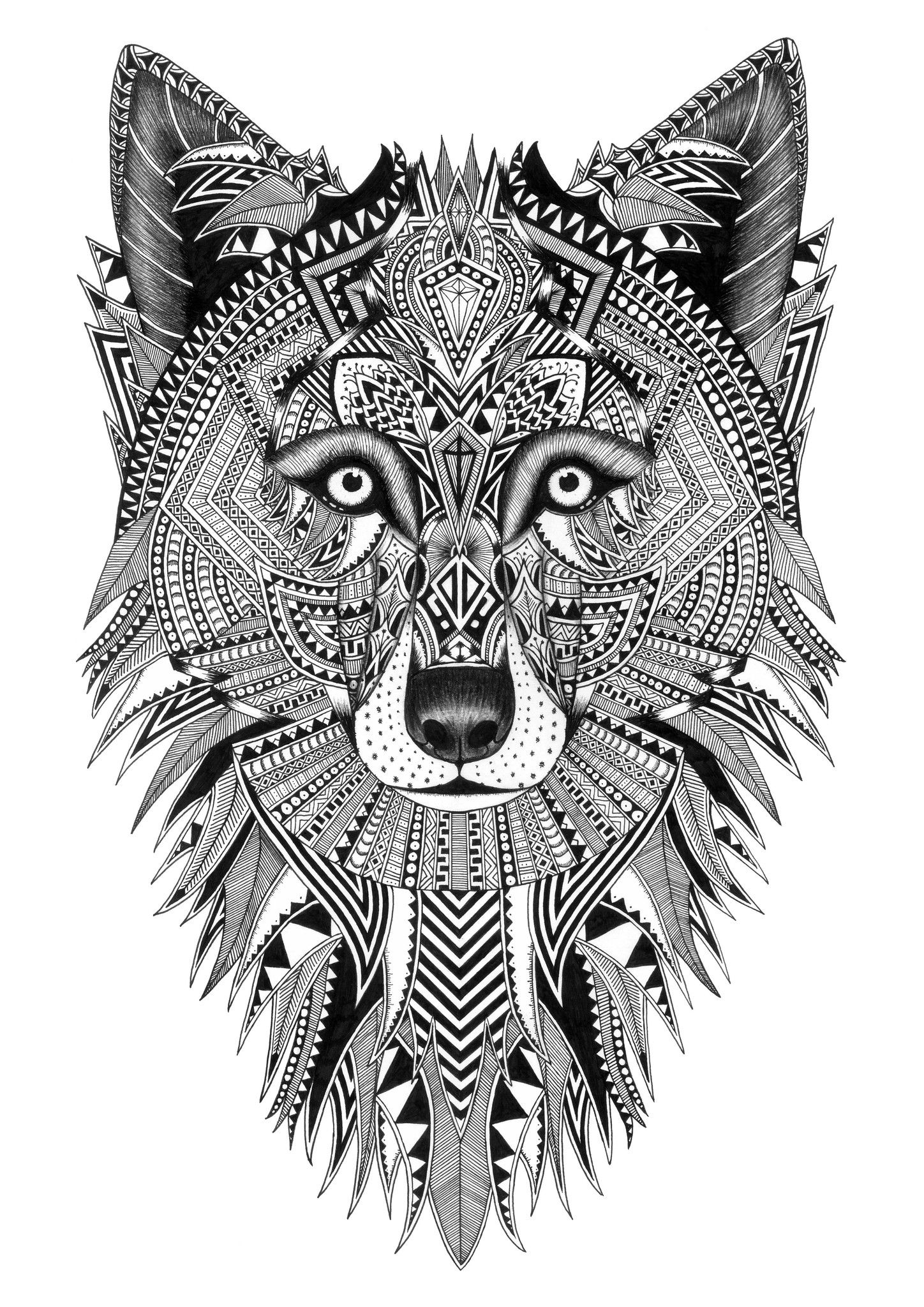 Grey Wolf Art Animal Coloring Pages Fox Coloring Page