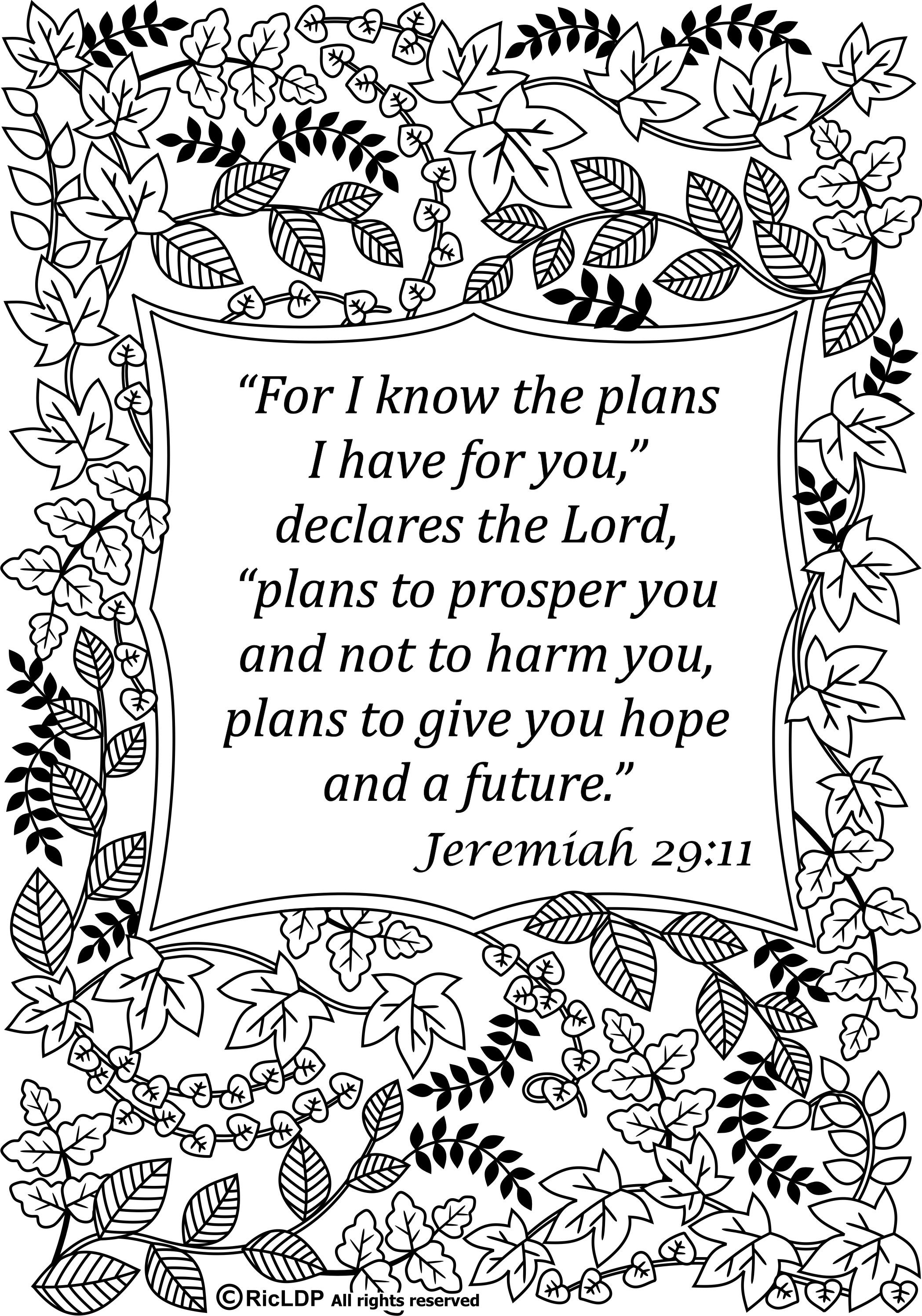 Pin On Coloring Pages With Bible Verses For Adults Grownups