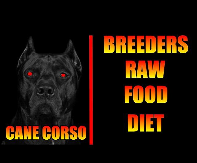 Pin On Cane Corso Diet Plan