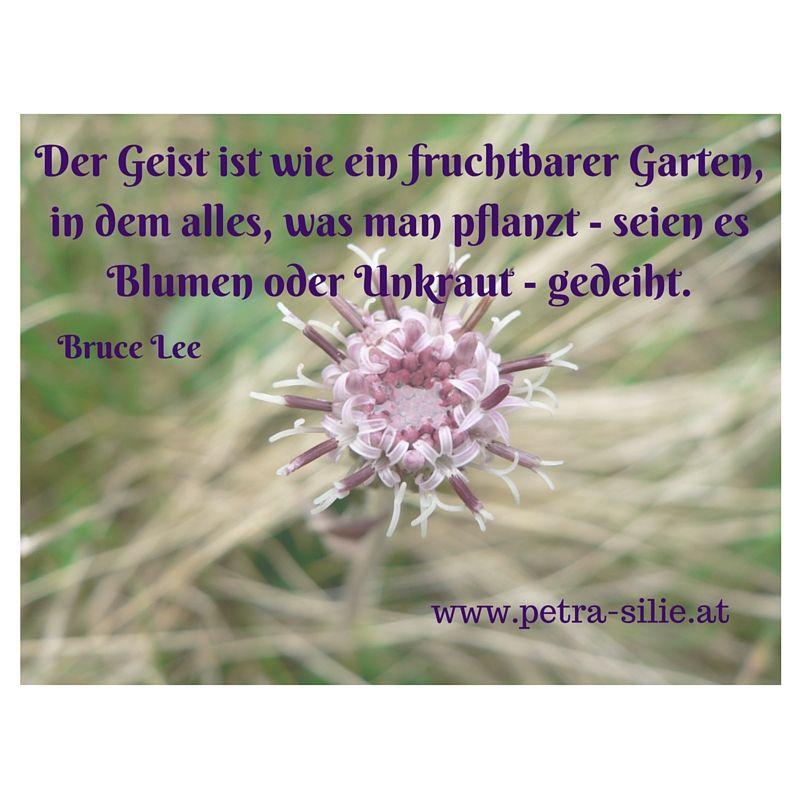 Vintage Der Geist ist wie ein fruchtbarer Garten in dem alles was man pflanzt