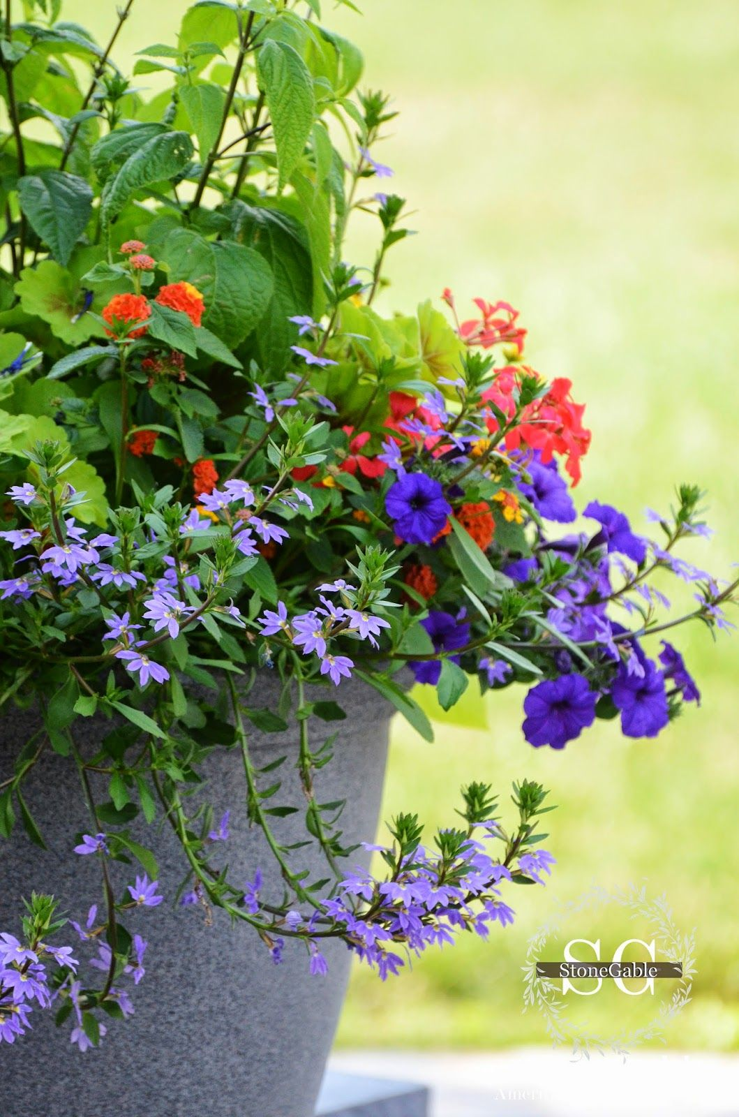 The Anatomy Of A Flower Pot Container Gardening Gardens And Plants