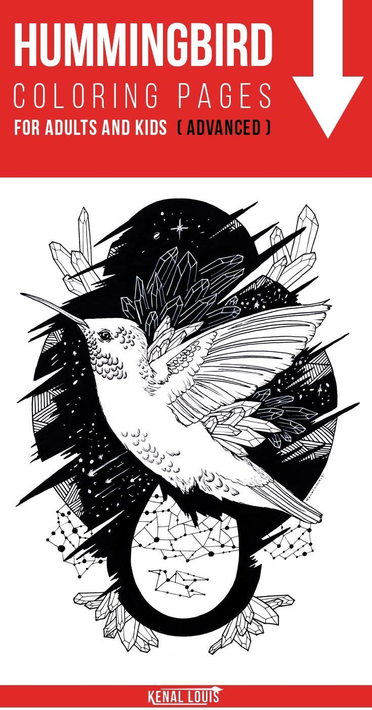 A Beautiful Collection of Hummingbird Coloring Pages | Hummingbird ...