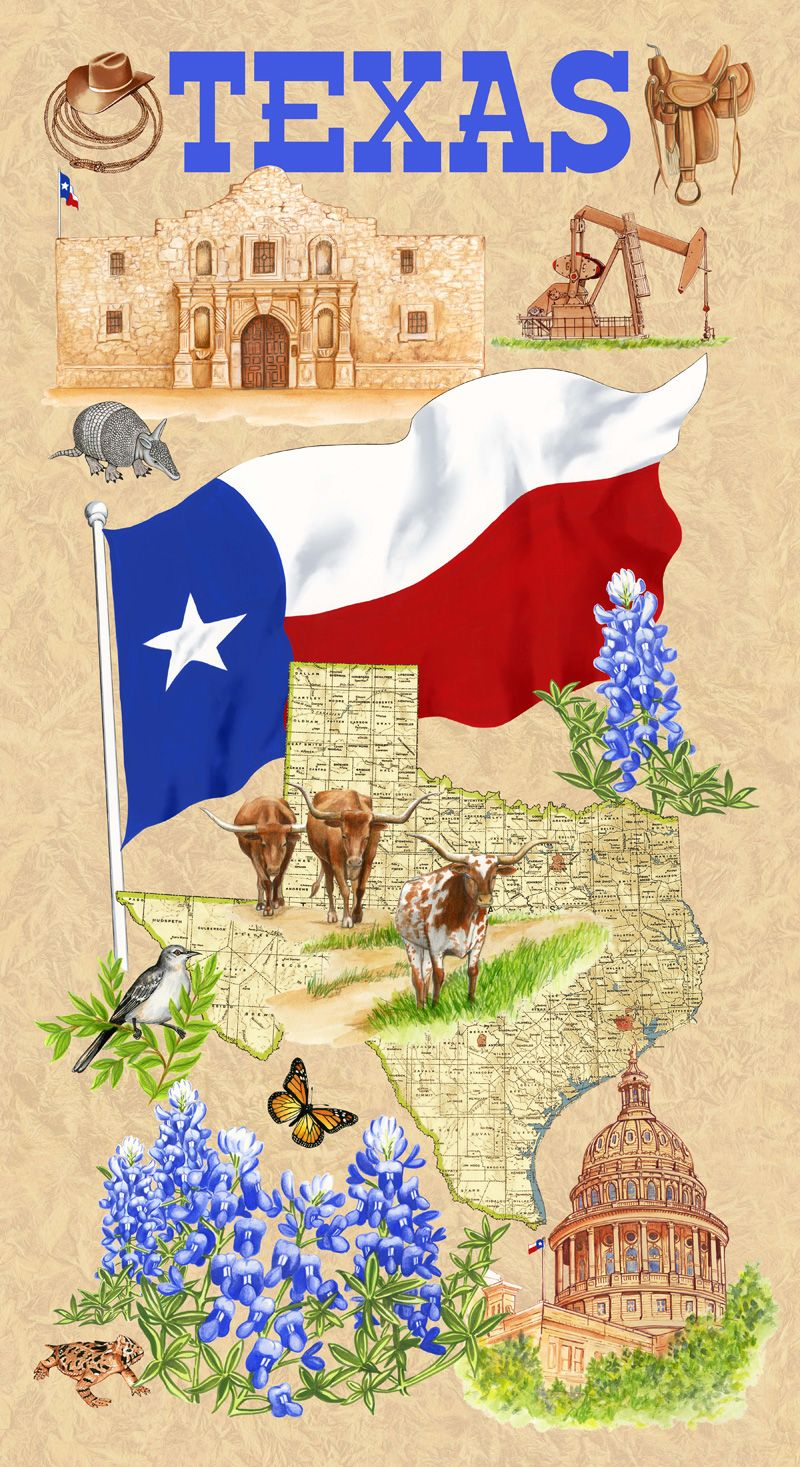 Texas Themed Fabric Panel Cowboy Quilt Quilts Quilt Shop