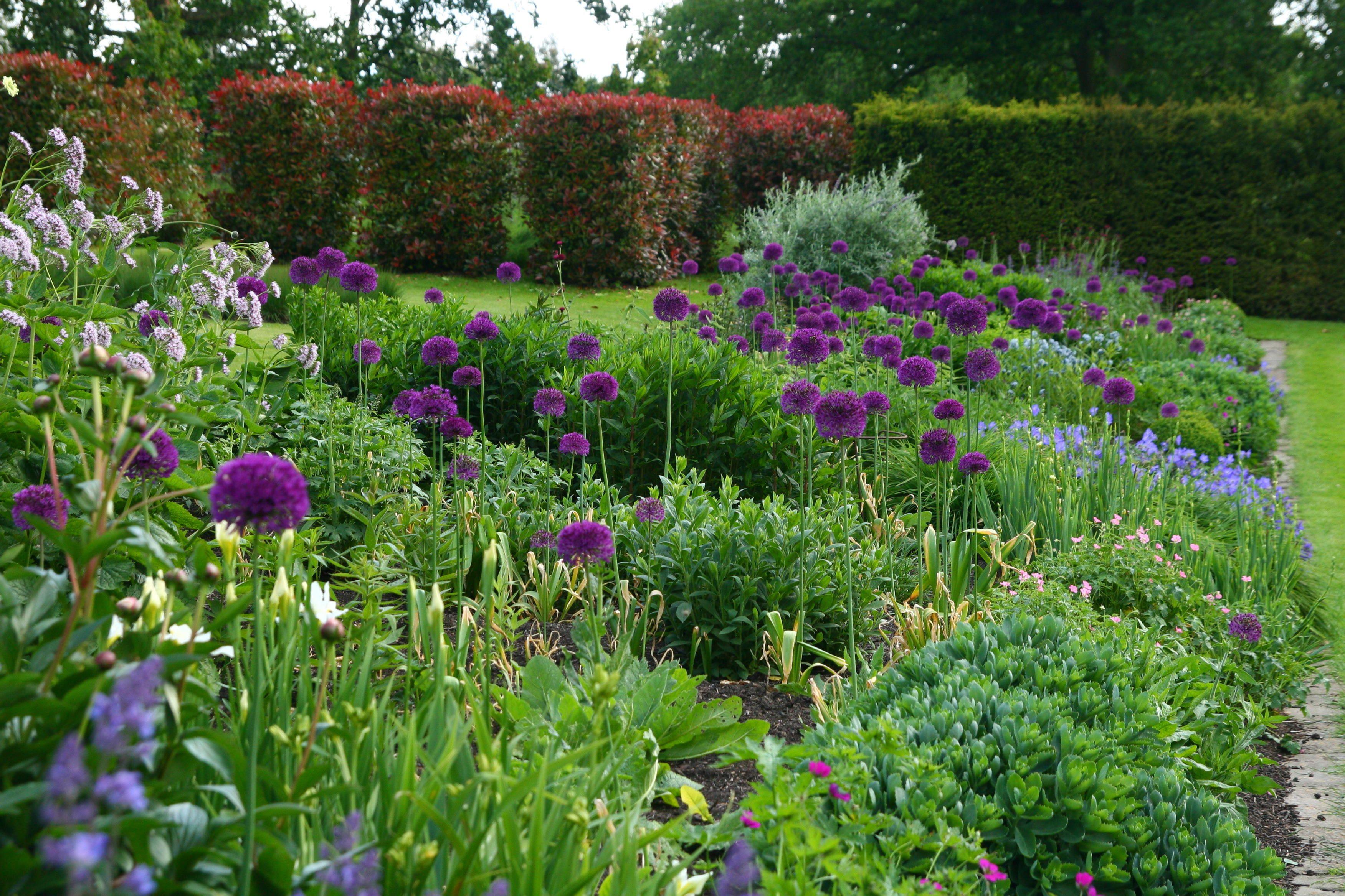 Home garden design flower  Pin by Jeanette Gilbertson on Gardens u landscape  Pinterest