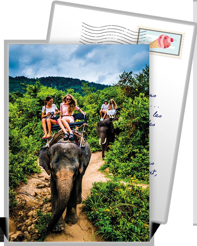 Carte postale personnalisée à envoyer à vos proches pour partager vos plus belles expériences ...