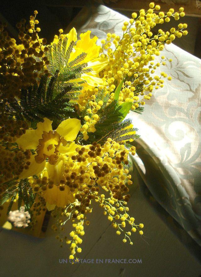 Bouquet fleurs jaunes 2