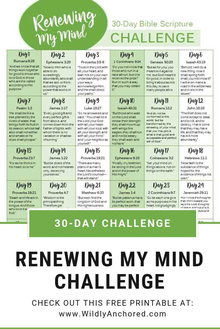 Take A 30 Day Challenge To Renew Your Mind Homeschool Giveaways Scripture Writing Plans Bible Study Scripture Read Bible