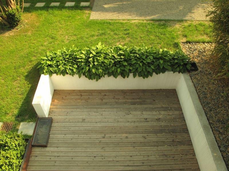 verputzte-beton-mauer-bilder-gartengestaltungsichtschutz-und - gartenarchitektur