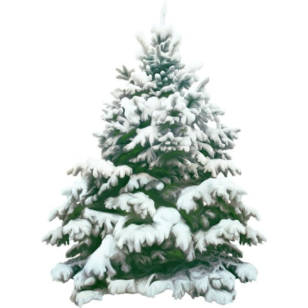 0 74d26 B77a5842 Xl Png Christmas Tree With Snow Christmas Tree Silhouette Snowy Christmas Tree