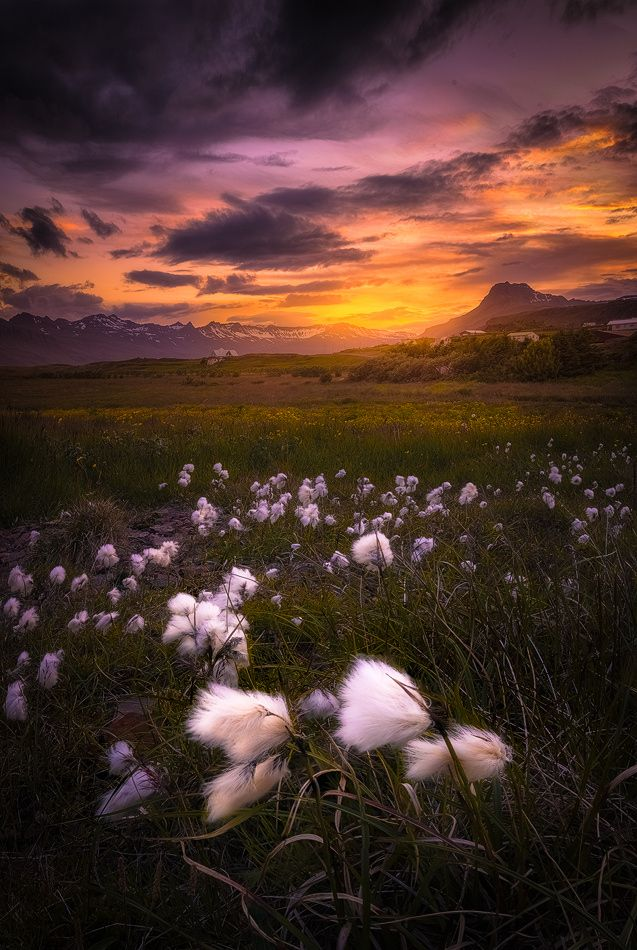 Fjordland by Matt Meisenheimer on 500px