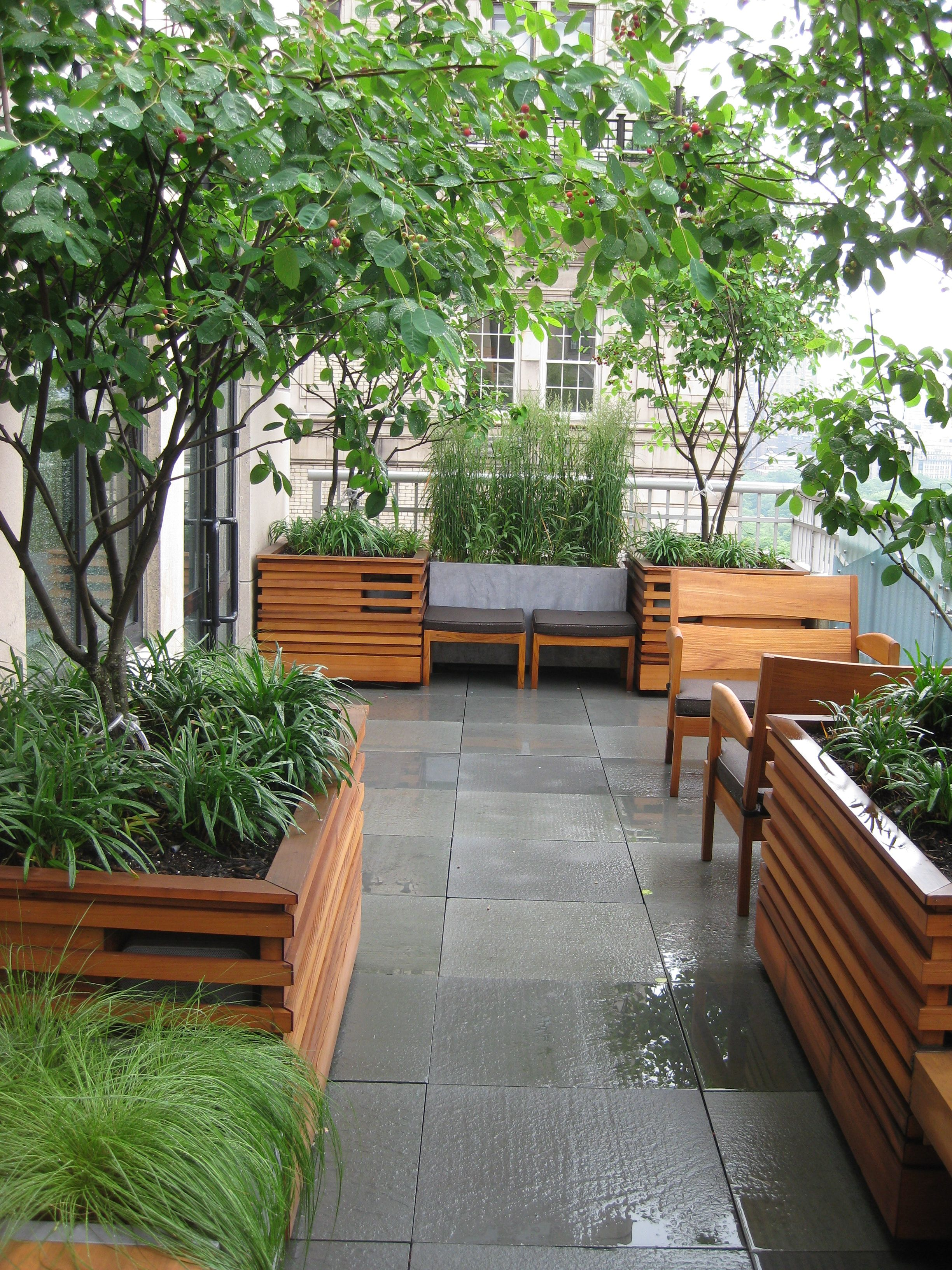 Rooftop Garden Manhattan Designed Installed Maintained By Plant Specialists Www Plantspecialists Com Rooftop Garden Garden Design Cool Plants