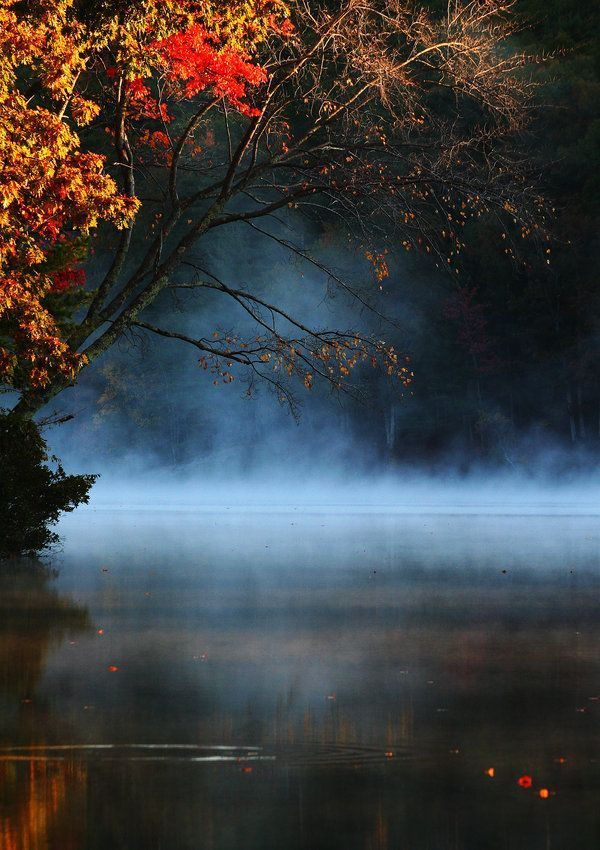 Autumn Landscape Fall Landscape Forest Water Pond By Imaginestudio Beautiful Nature Nature Photography Nature
