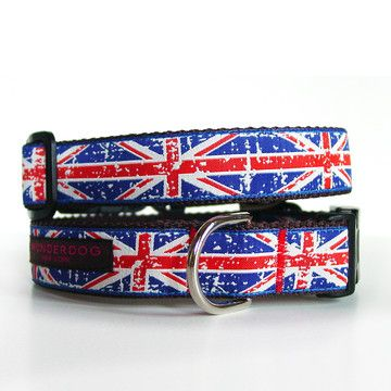 Union Jack Dog Collar British Love Union Jack Dog Day