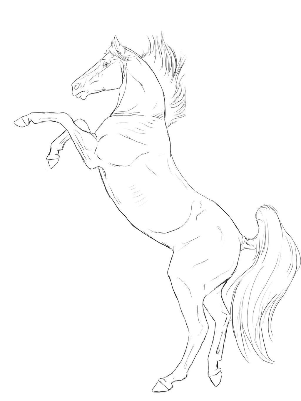 rearing horse line art two by xxkincadesvanityxx deviantart com on