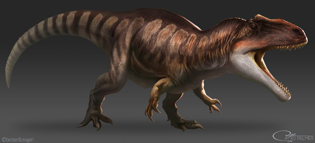Image result for giganotosaurus accurate