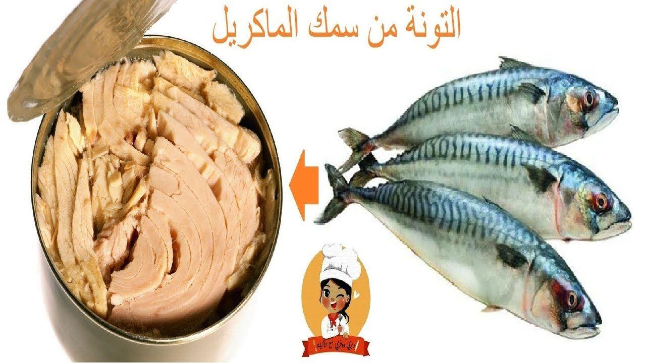 وداعا لشراء التونة الجاهزة وحضريها فبيتك من سمك الماكريل بابسط الطرق هنش Fish Meat