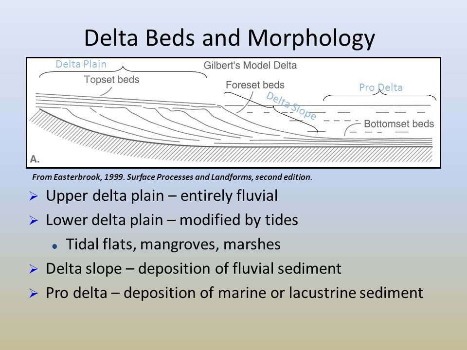 Diagram Of A Delta Landform Hayward Super Pump 2 Hp Wiring Related Image Geology Deltas Pinterest And Block Earth Science