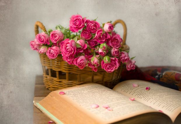 Beautiful Flowers Pictures For Whatsapp Dp