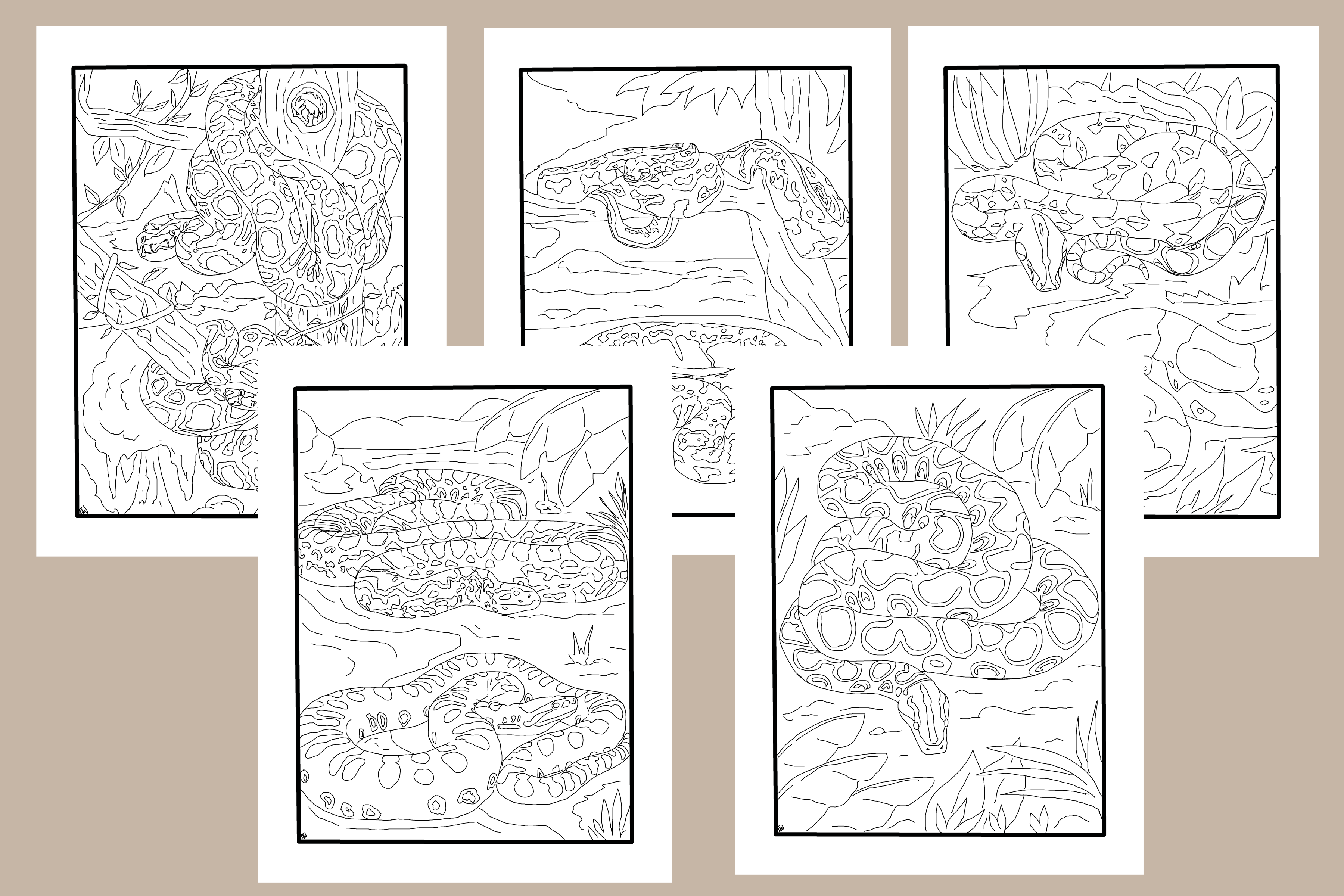 Big Snakes 5 Pack Of Coloring Pages Etsy Snake Coloring Pages Coloring Pages Color