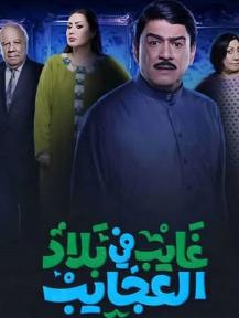 مسلسل غايب في بلاد العجائب رمضان 2020 والقنوات الناقلة Fictional Characters Character