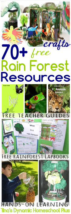 Tropical Rainforest Amazon Free Resources – Teachers Guides, Crafts, Lesson Plans