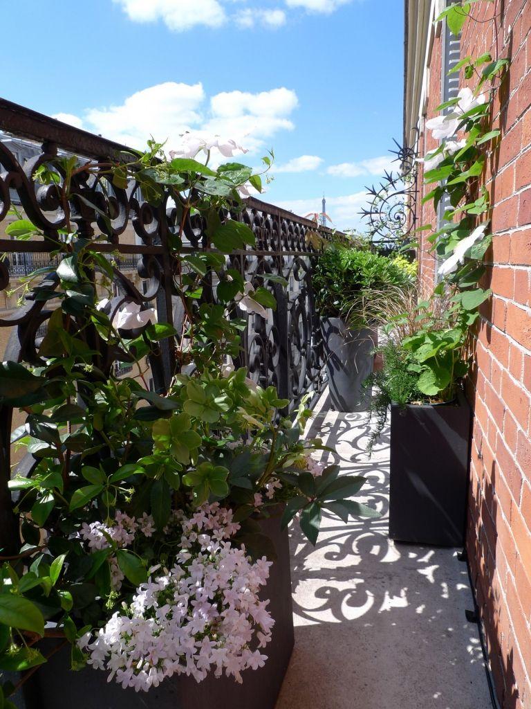 Projet am nagement paysager d 39 une terrasse paris jardin balcon balcons et du jardin - Terrasse et jardin fleuri paris ...