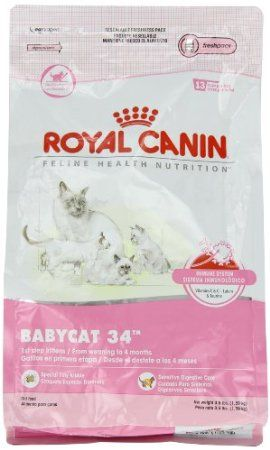 To Make Sure Our Kittens Grow All Big And Strong We Need Donations Of Royal Canin Babycat Not Kitten Food Both Wet And Dry Cat Food Cat Food Royal Canin