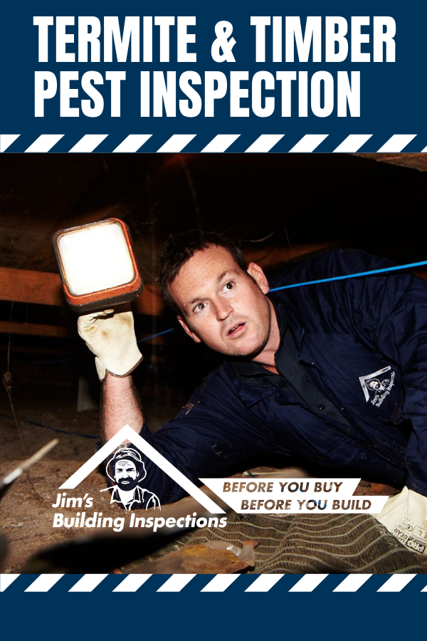 Jim's Building Inspections offers Building and Pest ...