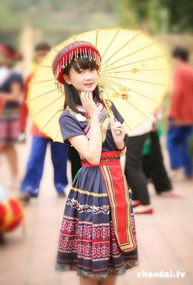 Vietnam,  ethnic groups in Vietnam , capital hanoi ( thang long ) ,daila city , north vietnam