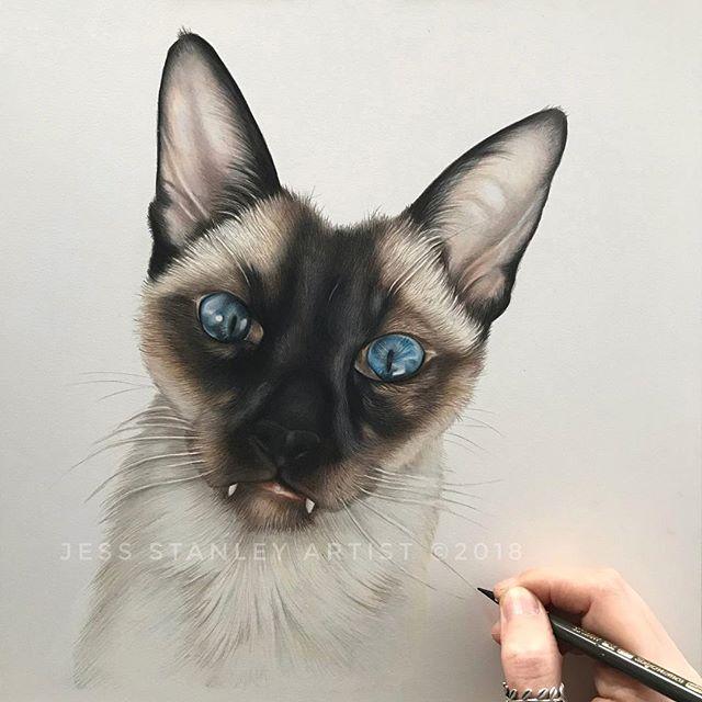 Jess Stanley Artist 🏻 (jessstanleyartist) • Instagram