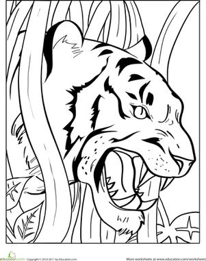Worksheets: Growling Tiger Coloring Page