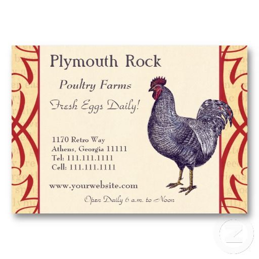Proud Plymouth Rock Rooster Poultry Farm Business Card Zazzle Com Poultry Farm Poultry Business Plymouth Rock
