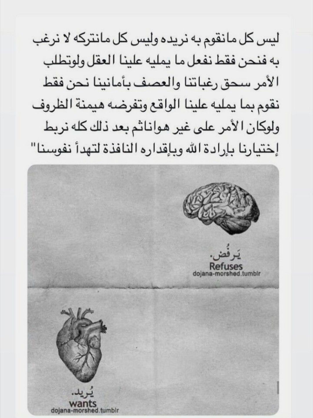 Pin By Asia Abdallah On Quotes Arabic Quotes Wise Words Quotes Beautiful Arabic Words