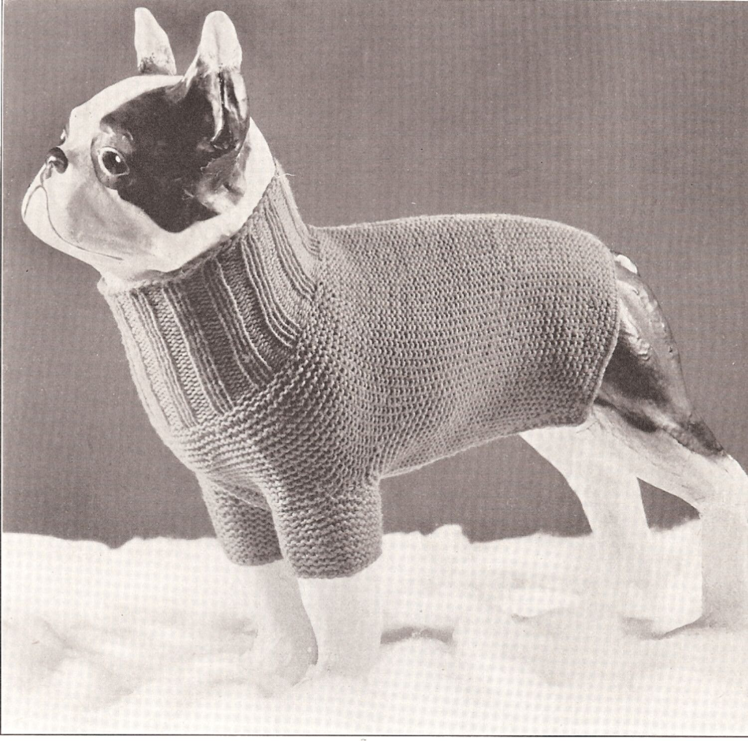 Details about vintage antique knitting pattern to make dog sweater details about vintage antique knitting pattern to make dog sweater coat turtle neck dogsweater bankloansurffo Gallery