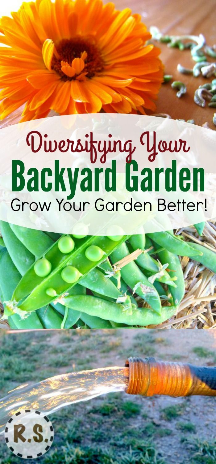 I like gardening... But would you believe it if I told you that when I first started I thought I would hate it! :) Learn about…