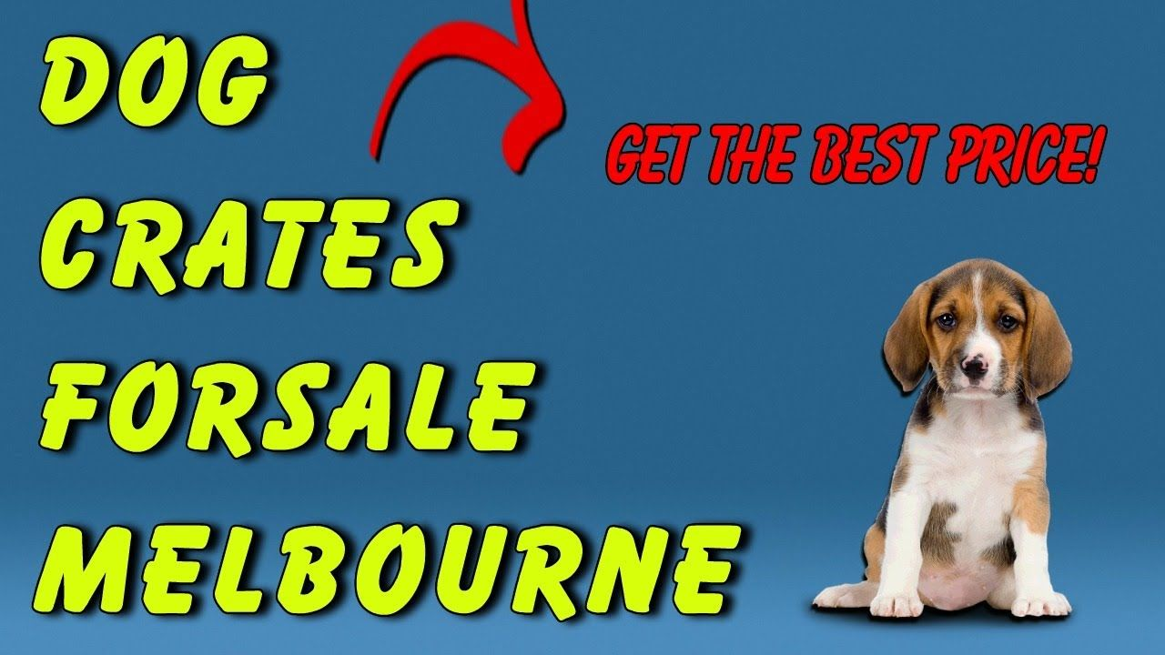 Dog crates for sale melbourne get your new dog crate in