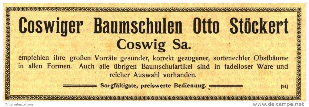 Original Werbung Anzeige 1917 Coswiger Baumschulen Otto Stockert Coswig Ca 155 X 45 Mm Baumschule Schule Werbung