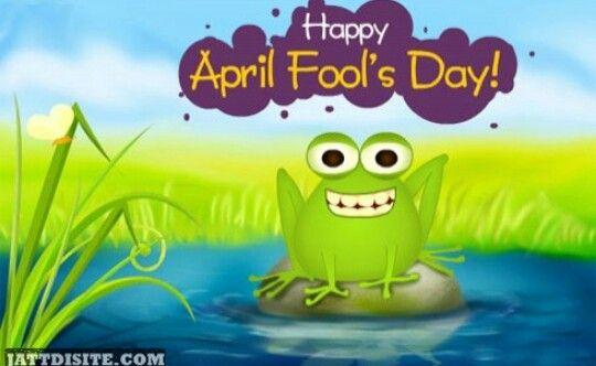 April Fool's Frog April fools, April fools day, April