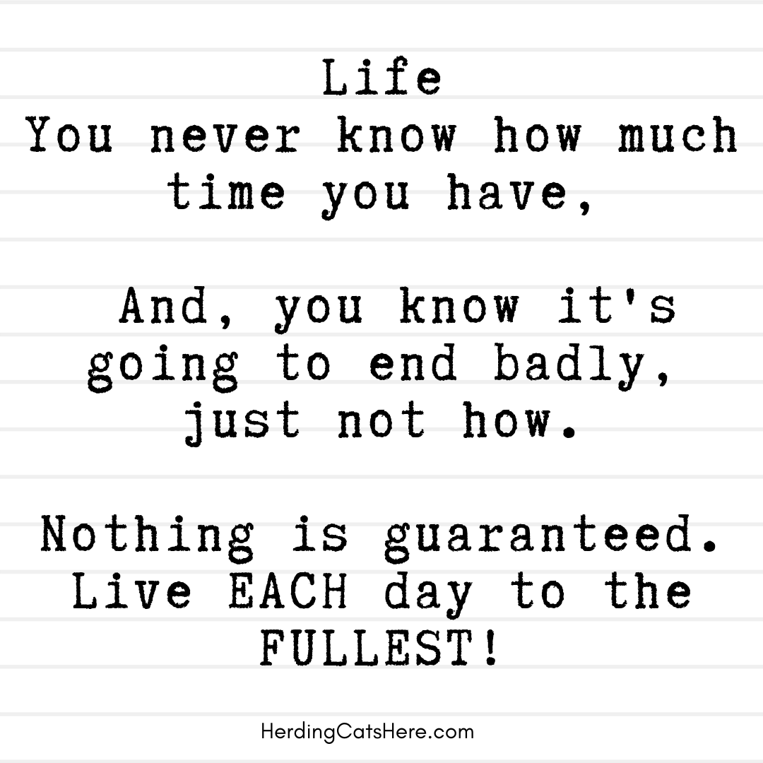 Life Memes Wise Quotes Quotes Inspirational Quotes