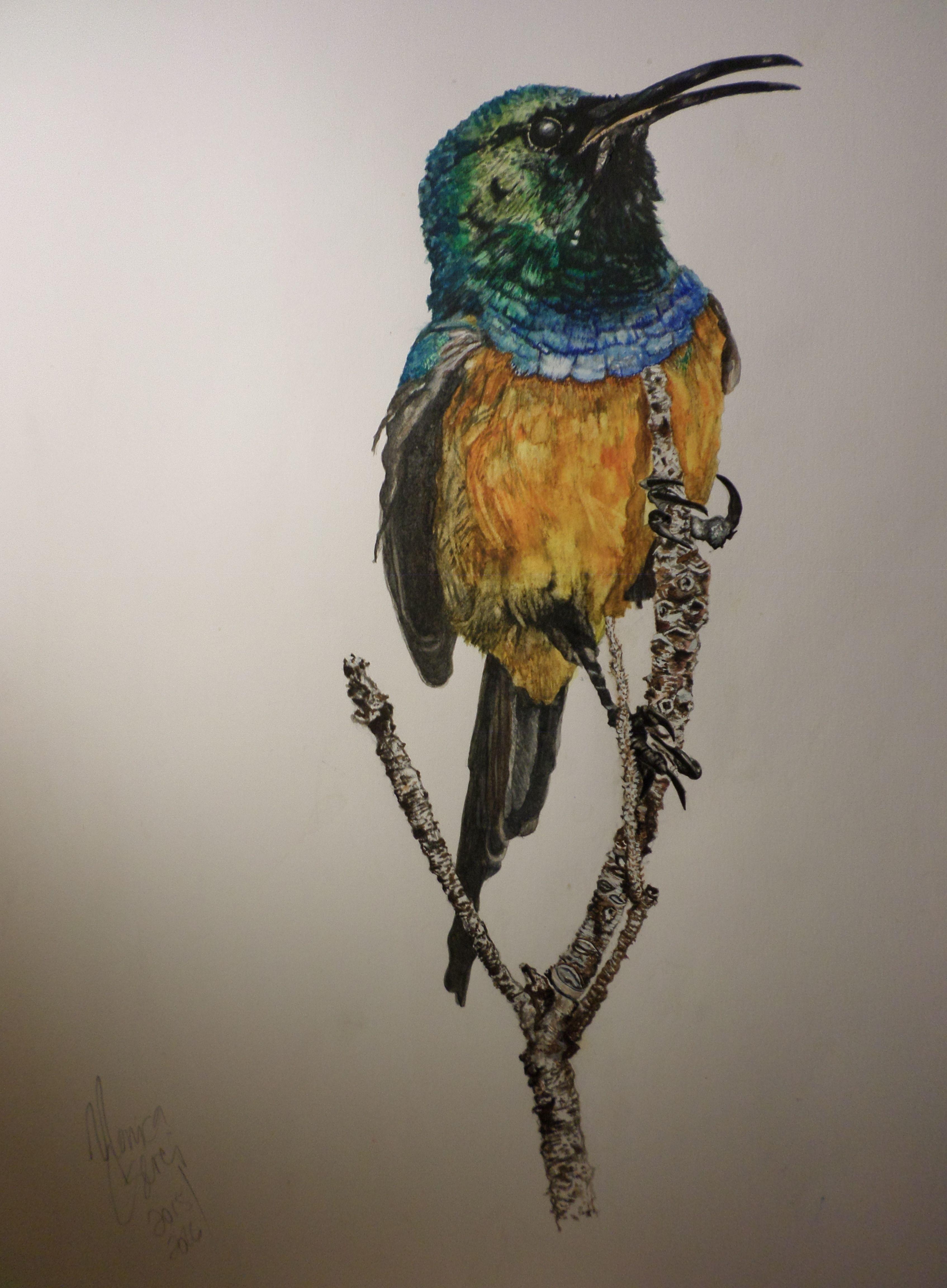 Original Artwork Watercolour Painting By Monica K Cserei Title