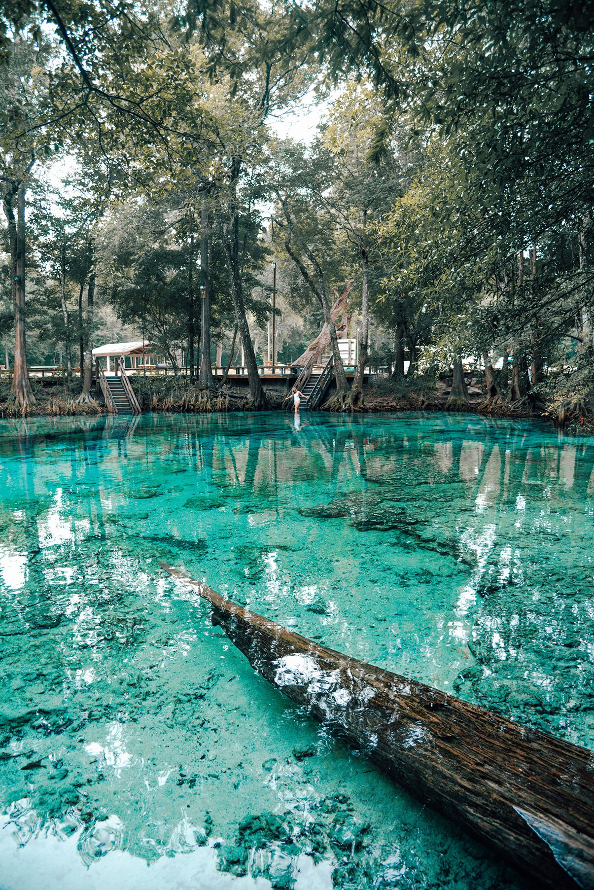 The perfect family trip to Ginnie Springs | Florida | USA